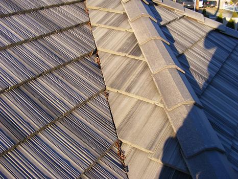 Cleaned roof Olympia, WA